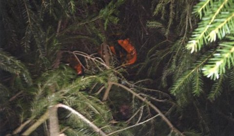 GJEMT I SKOGEN: I skogholt ved Nordby idrettsanlegg fant politiet to bager som inneholdt 17 kilo heroin og kokain.