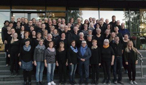 Ettertraktet: Så populær blant publikum i Narvik er korforbundets Musicals in Concert, at det blir ekstraforestilling lørdag 5. mars. På dette bildet står  sangerne som skal opptre i Narvik.