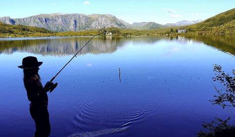 FISKER: Barnebarnet vårt Julie fiskar på Sunnmøre. Ser ein godt etter, er der to svaner litt til høgre for hytta bak i midten. Foto: Olav S Årflot.