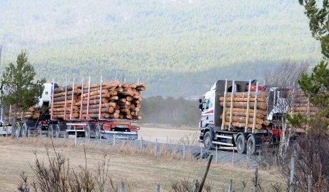 STOPP: Nå kommer det bruksordning for vegen til Lordalen der blant annet tømmertransporten har vært stoppet.