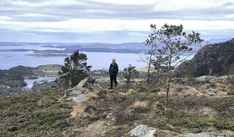 Målefjell: Målefjell ligger i Sveio. Foto: Aslaug Dommersnes, Haugesund Turistforening