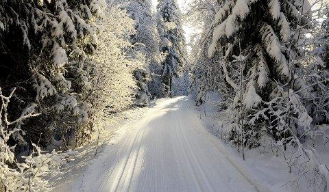 Gode skiforhold: Både i Holmestrand og Hof er det flotte løyper tross regnvær. Foto: Privat