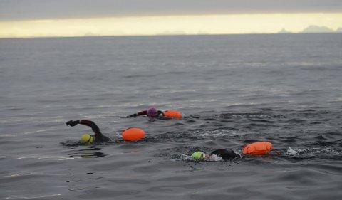 WSB i Moskstraumen: Calum, Jack og Robbie Hudson fikk optimale forhold på sin svømmetur over Moskstraumen; åtte kilometer fra Breivika på Værøy til Lofotodden. Foto: James Silson