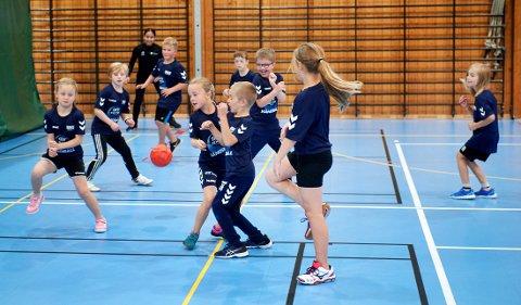 HÅNDBALLFERIE: Både i Namsos og Rørvik er det håndballskole denne uka. Det er ingen ting å si på innsatsen blant de unge.