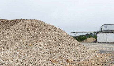 AVGJØRES ONSDAG: Styret i Hunton skal onsdag avgjøre hvor den nye fabrikken skal bygges. Kanskje bytter de vekk Huntonstranda (bildet) mot å overta Skjerven næringspark?foto: Henning gulbrandsen