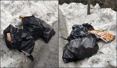 – SPRØTT: Trond Vesterås (63) synes det er uforståelig at disse søppelsekkene ble plassert i veikanten på Vesetvegen.