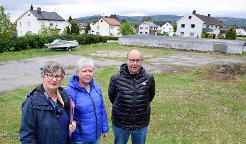 PLASS: Denne plassen har Hov borettslag fått tilsagn om å få kjøpe av Ringerike kommune. Men Gerd Torp Andersen, Astrid Engesli og Jan Kristian Myhre Pedersen har jobbet med saken i en årrekke, uten at salget er gjennomført.