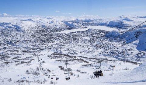Hovden alpinsenter har blant annet tynnet ut skogen før sesongen, slik at det skal bli bedre forhold for løssnøkjøring. FOTO: Tor Erik Schrøder /NTB scanpix