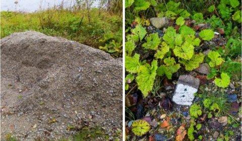 Noen eksempler på masser og avfall som statsforvalteren vil ha fjernet fra en eiendom i Sola.