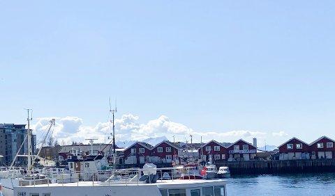 Fiskeri skal ha fortrinn i havna. Bodø Fiskarlag forutsetter at planforslaget legger til rette for at fiskerinæringen skal få bruke minst de arealene som de bruker i dag.