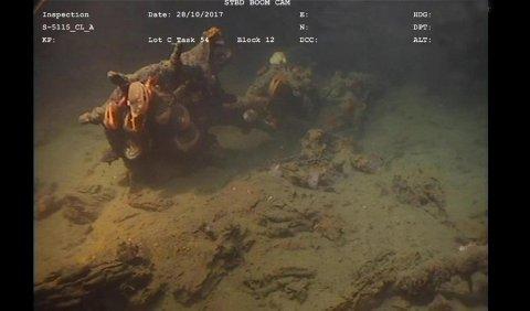 Mer enn 25 ulike skipsvrak ble oppdaget i Hardangerfjorden de siste ukene.