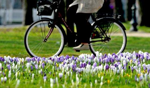 BIKE INNOM: Alle er velkomne til å sykle innom når kirken kaller sammen til bike-in-gudstjeneste i Kirkeparken tirsdag morgen.