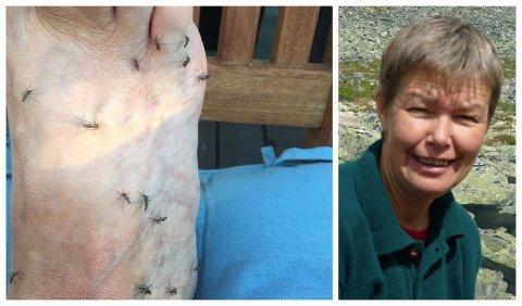 - Til slutt måtte jeg bare skratte, sier Anne Feiring som var på Biri på besøk fredag kveld og fikk se så mye mygg som hun aldri før har sett. Vanligvis bor hun i myggfrie (?) Gausdal.