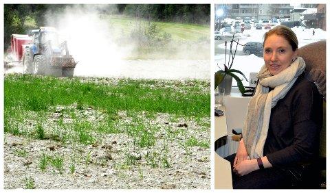 DE FLESTE FIKK ERSTANING: Ikke alle fikk søknadene om erstatning innvilget. Bente Odlo,  avdelingsdirektør hos Fylkesmannen i Innlandet mener det kan skyldes at kommunene ble ulikt rammet av tørken.