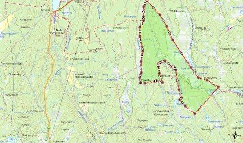 DEL AV HURDAL: Dette kartet viser Eina Almenning sitt område som nå er vedtatt en del av Hurdal.