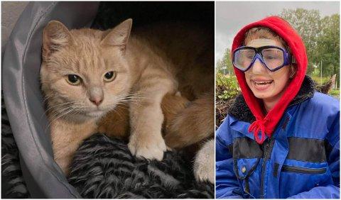 PÅDRIVER: Tea Reneé Hole var pådriver for å få katten ut, før arbeidet med flomsikringen i Brandbu startet opp igjen etter ferien.