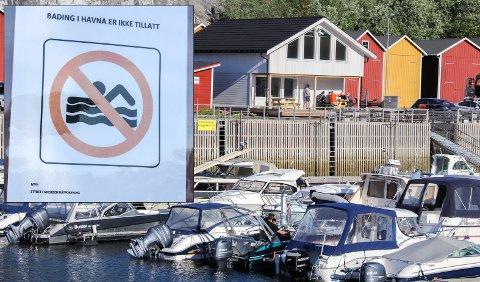 Forbudt: I flere år har Mosjøen båtforening merket seg at ungdommen drar til småbåthavna for å hoppe fra kaikanten og ut i havet. Nestleder i foreninga Per Arne Rynesli forteller at det er flere grunner til at dette er farlig og forbudt.