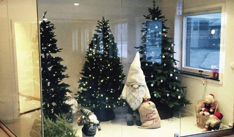 JULESTEMNING: Glassmonteret ved Aursmoen skole som tidligere huset utstoppede dyr skutt av en overgriper er byttet ut med juletrær og nisser. Foto: Privat