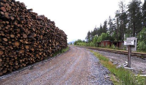 HVA ER PLANEN? Det lagres store mengder tømmer ved jernbanelinja i Flesberg sentrum. Thomas Fosen (H) vil vite hva som egentlig er planen her.