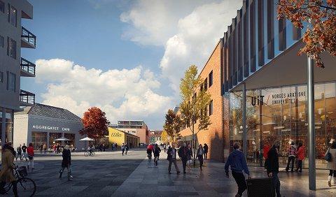HAVNEGATA: Området skal kunne være en møteplass for studenter, ansatte og øvrig befolkning i Harstad.