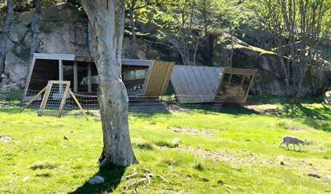 På Ildverket er nå padlehukene gjerdet inn for å stoppe sauene.