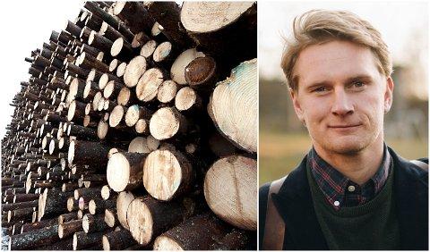 SÅRBARE:  Koronakrisen synliggjør hvor sårbar trenæringen er, sier Knut Skinnes i Norwegian Wood Cluster. Han oppfordrer private og det offentlige om å investere i større byggeprosjekter.