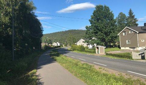 LINJEFALL: Det var her i Rulseveien på Åneby den uheldige huseieren måtte ha hjelp til å fjerne et tre over strømlinja. Nå har han fått en solid regning etter uhellet.