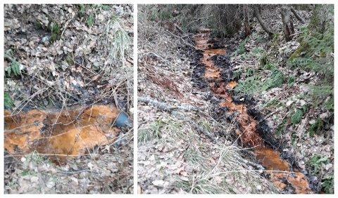 BEKYMRET: Tipseren la disse to bildene ved bekymringsmeldingen til kommunen.