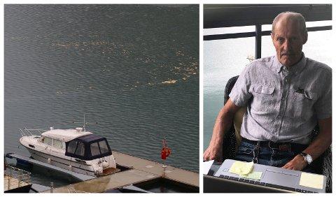 LEI GRISERIET: Styreleiar Ingmar Husnes i Sjøkanten båtforening har bede kommunen ta grep, men blir avfeia.