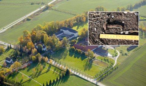 SENSASJONELT FUNN: På eiendommen til Jarlsberg hovedgård er det funnet store skipsnagler. Arkeologene mener disse kan stamme fra en stort vikingskip.