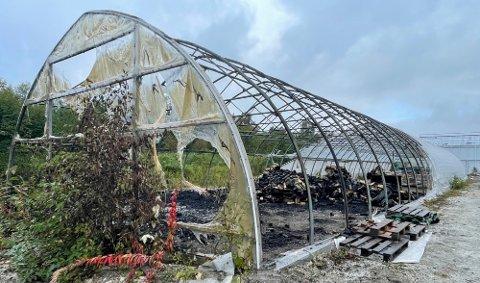 Lagerhallen ligger noen få hundre meter unna bygget hvor Siso Vekst holder til, og det var i denne enden at brannen startet. Foto: Michael Jensen Olafsen