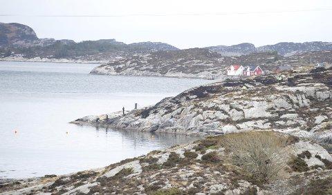 Et helikopter fra Nordsjøen styrtet like ved Turøy i Ettermiddag fredag. 13 Mennesker er sannsynligvis døde i styrten  Pressen fikk endelig komme litt inn i området der helikopterstyrten. Innsatsleder Ole Bjørn Sveen  Her ser vi direkte på styrtstedet. Det hvite huset oppe til til høyre vaks eg opp. Magne   Bilde tatt av pressefotograf Magne Turøy, Bergensavisen Tlf: +4790193165 magne.turoy@ba.noressen fikk endelig komme litt inn i området der helikopterstyrten