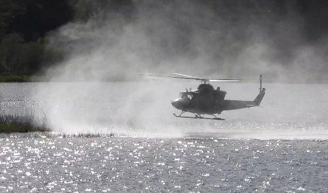 OVER HEKKEOMRÅDE: Et av Forsvarets helikopter fløy lavt over Borrevannet og hekkeområder hvor sterkt utrydningstruede fuglearter har reder.