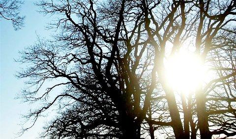 NYT SOLA: Dette er dagen å nyte det gryende vårværet. Snart blir det kaldere.