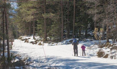 Det kan bli skiføre i Brekko også i helga. Dette bildet er tatt ved en tidligere anledning (arkivfoto: Bjarte Espedokken).