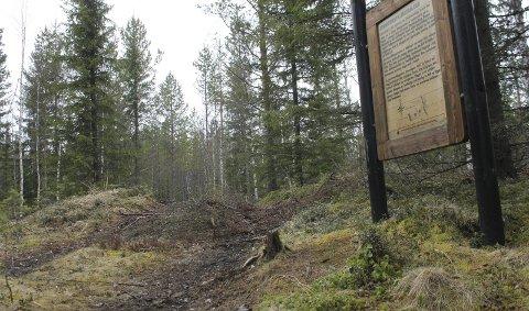 SKADER: En maskinfører hos Glommen Skog kjørte over en godt merket slagghaug i forbindelse med skogsdrift. Bedriften meldte selv fra til fylkeskommunen.