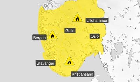 TØRT: Det er tørt i terrenget, og skogbrannfare i hele Sør-Norge. Farevarselet fra meteorologene dekker dette området i siste oppdatering.