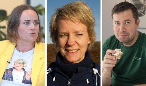 INNE PÅ TINGET: Margret Hagerup (H), Ingrid Fiskaa (SV) og Geir Pollestad (Sp) får etter alle solemerker plass på Stortinget de neste fire årene.