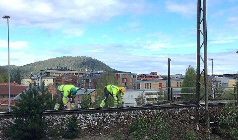 Det utføres arbeid på flere ulike jernbanestrekninger i helgen. Som her, rett i nærheten av Kongsberg sentrum.