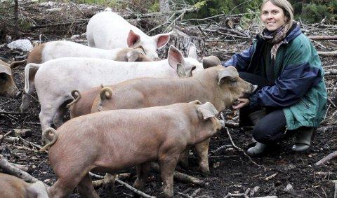 Vil slakte lykkelige griser: Henriette Grøndahl er opptatt av at grisene skal ha levd et godt liv før de slaktes. Derfor lever grisene hennes ute hele året. alle FOTO: ELISABETH JOHNSEN