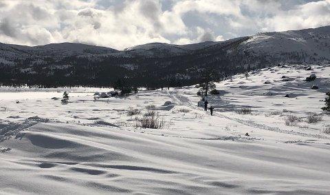 LYNGSHEIA: Det er ennå fine vinterforhold i fjellet i Ryfylke. Slik så det ut i Lyngsheia i slutten av februar. Foto: Gaute Henriksen