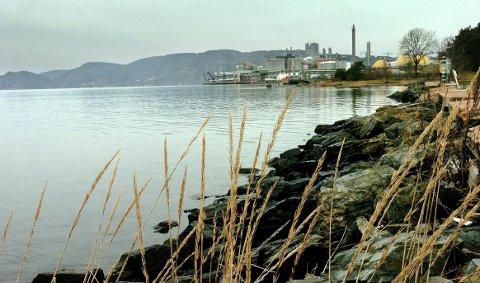 FRIERFJORDEN: Miljømyndighetene vurderer pålegg og tiltak i Frierfjorden. Men det skal ikke ha betydning for dagens drift i industriparken, bedyrer administrerende direktør, Thor Oscar Bolstad.