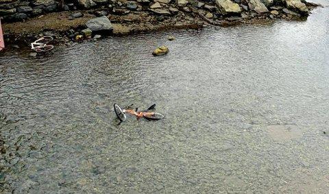 Her er to sykler dumpet i elva. Foto: Stian Saur