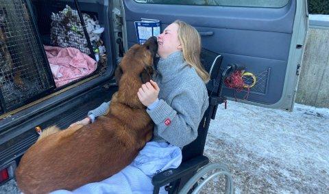 FØLELSESLADET MØTE: Andrea Emilie Frednes savner dyrene sine, men vet at de er i de beste hender selv om hun ikke kan være sammen med dem i øyeblikket. Her får hun hilse på en av hundene, to uker etter ulykken.