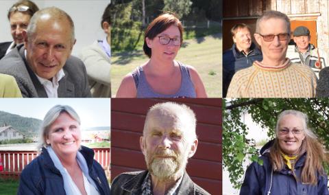 Toppkandidater på Alvdal. F.v Johnny Hagen (AP), Mona Murud (SP), Ola Eggset (V), Tirill Myklebust Langleite (H), Arne Dagfinn Øynes (KrF) og Anne Therese Vanem (MDG).