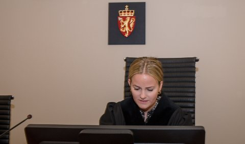 DOM: Dommerfullmektig Fanny Bratfos fant flere omstendigheter som ga hortensmannen en mild dom.