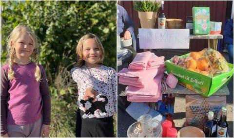 INNSAMLING: Ingrid Lindstad Seljenes (til venstre.) og Astrid Røken samlet med vennene sine inn penger til barnekreftforeningen lørdag.