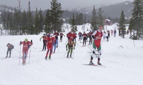 Staket: Tarjei Solli, Drevja tok teten ut fra start og staket fra de andre. Han ledet på det meste med godt over et minutt.
