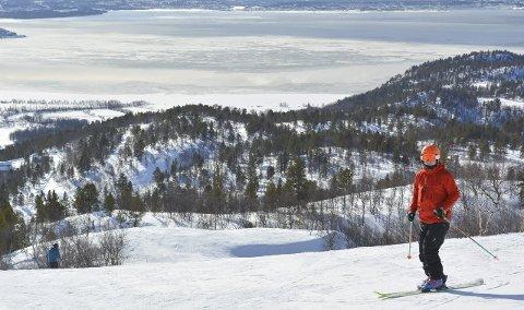 HYGGET SEG I BAKKEN: Alf Bjørnar «frikjører»Eriksen er klar for en runde i bakken i strålende solskinn.Foto: Erlend Hykkerud