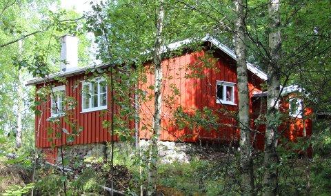 PÅGANG: Egil Schjerverud opplevde stor pågang da han la ut hytta for salg til 50.000 kroner. Han valgte til slutt å selge til en utflyttet brandbuing.